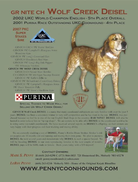 Penny's English Coonhounds - HALL OF CHAMPIONSDUAL GRAND CHAMPION